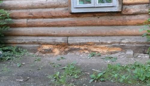 """На фото старый дом, фундамент которого """"утонул"""", нижние венцы в результате контакта с почвой сгнили. Без подъема дома их никак не поменять."""