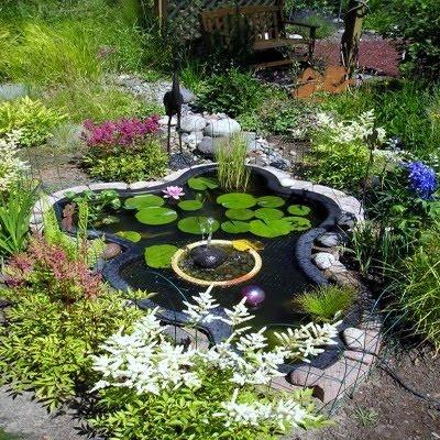 Сад пруд своими руками