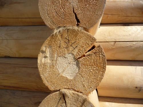 Летнее бревно - отчетливо видны большие трещины